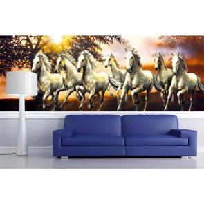 Zeven Gratis Paarden Fotobehang - Gelijmde
