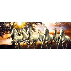 Zeven Gratis Paarden