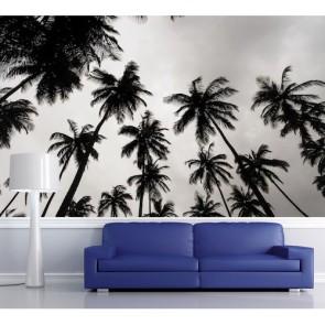 Palmbomen In Zwart En Wit 3D Behang - Gelijmde