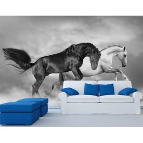 Paarden Grootbrengen 3D Behang - Gelijmde